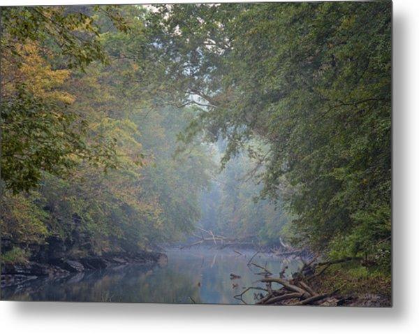 Misty Creek Metal Print by Dale Wilson
