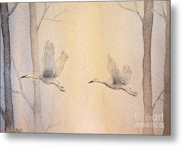 Misty Flight Metal Print