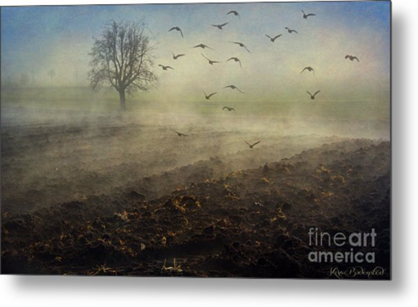 Misty Meadows Metal Print