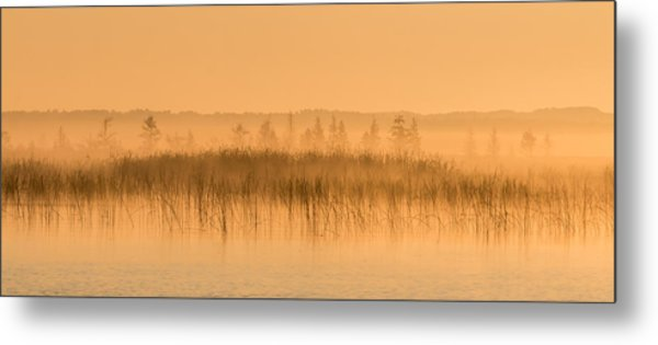 Misty Morning Floating Bog Island On Boy Lake Metal Print