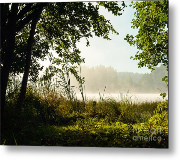 Misty Morning Light Metal Print