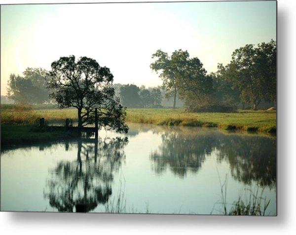 Misty Morning Pond Metal Print