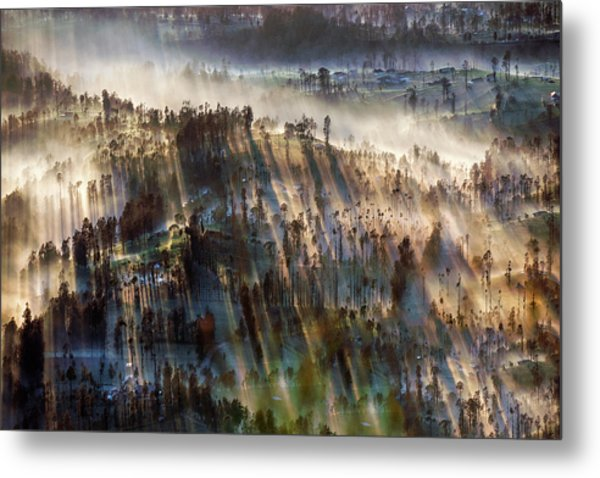 Metal Print featuring the photograph Misty Morning by Pradeep Raja Prints