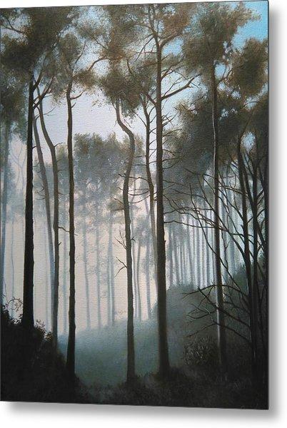 Misty Morning Walk Metal Print