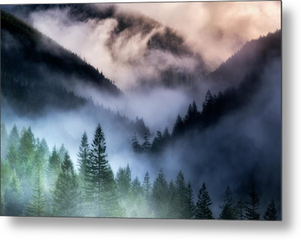 Misty Mornings Metal Print