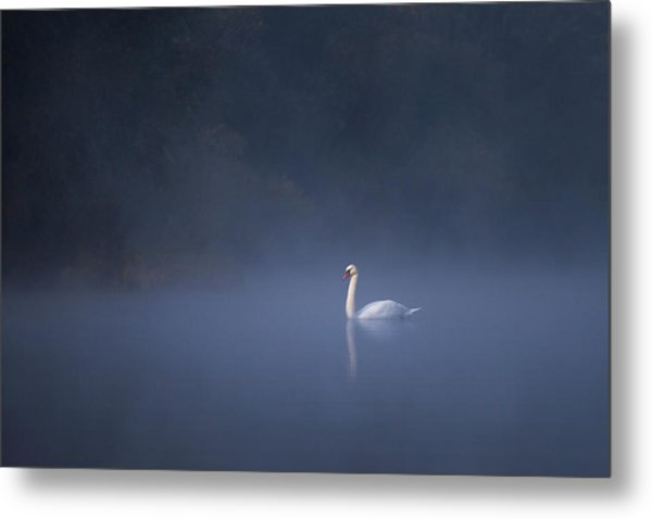 Misty River Swan Metal Print