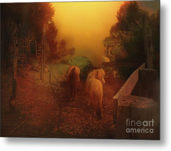 Misty Sundown Metal Print