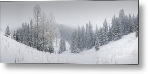 Misty Winter Panorama Metal Print