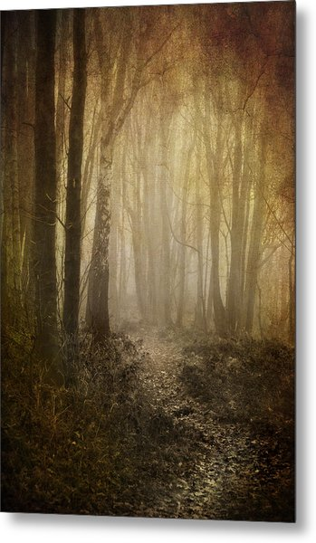 Misty Woodland Path Metal Print