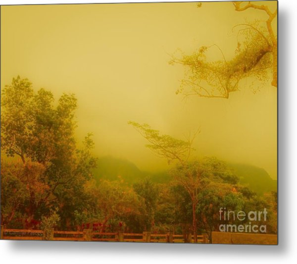 Misty Yellow Hue- El Valle De Anton Metal Print