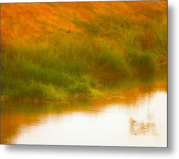 Misty Yellow Hue -lone Jacana Metal Print