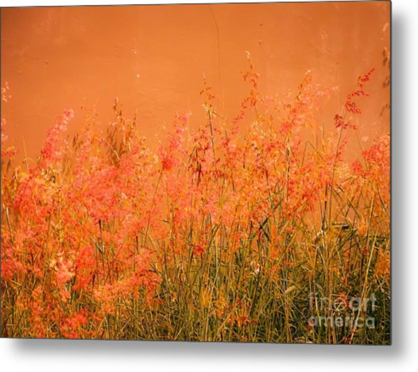 Misty Yellow Hue- Pink Blooms Metal Print