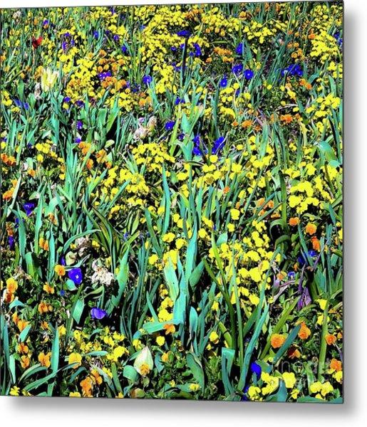 Mixed Flower Garden 515 Metal Print
