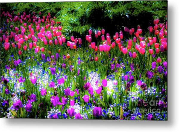 Mixed Flowers With Tulips Metal Print by D Davila