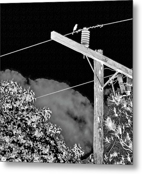 Mockingbird On A Wire Metal Print