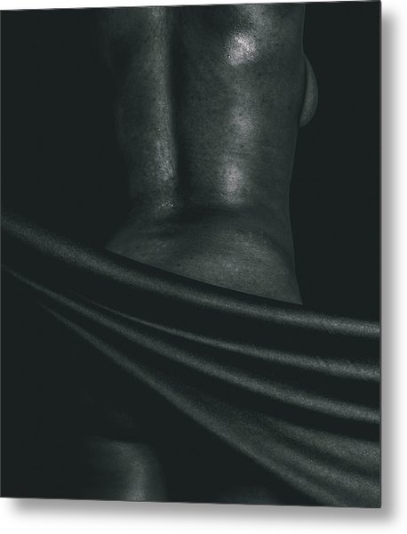 Modesty 3 Metal Print by Will Leffert
