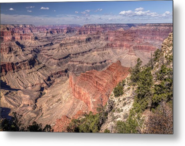 Metal Print featuring the photograph Mohave by John Gilbert