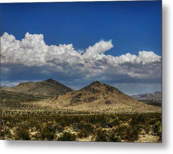 Mojave 020 Metal Print by Lance Vaughn