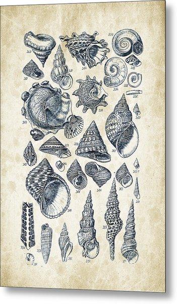 Mollusks - 1842 - 16 Metal Print