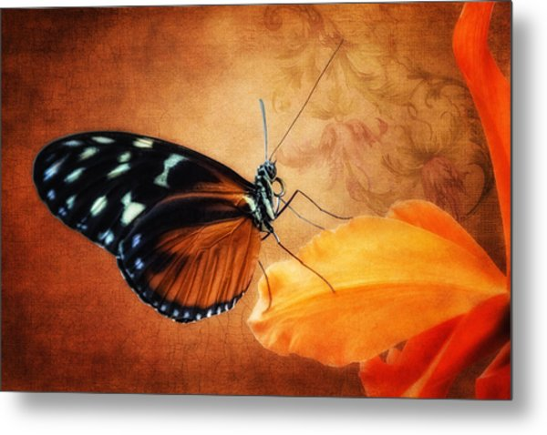 Monarch Butterfly On An Orchid Petal Metal Print