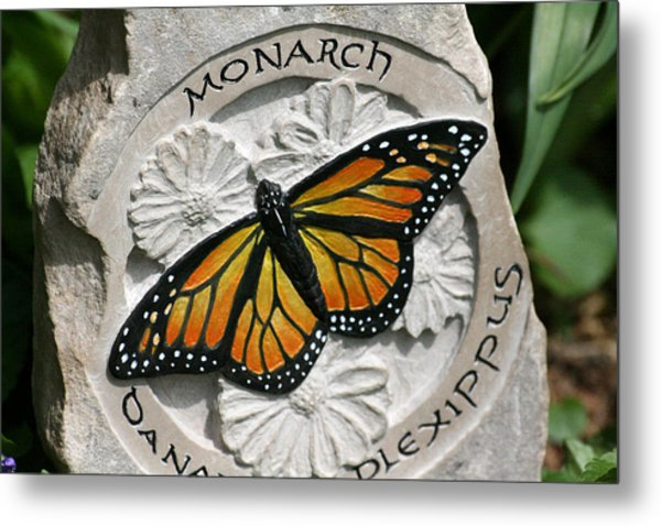 Monarch Metal Print by Ken Hall