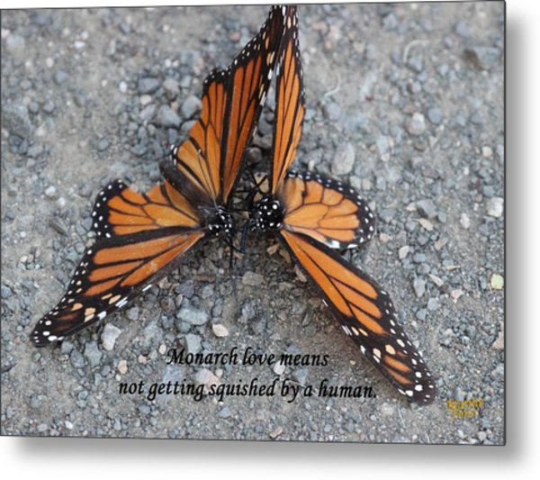 Monarch Love Means Not Getting Squished  Metal Print