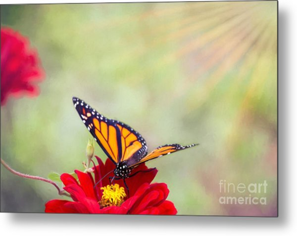 Monarch Magic Metal Print