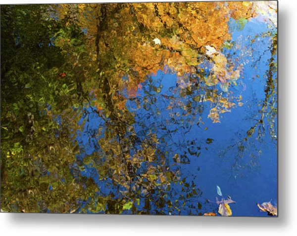 Metal Print featuring the photograph Monet's Autumn Pool by Lon Dittrick