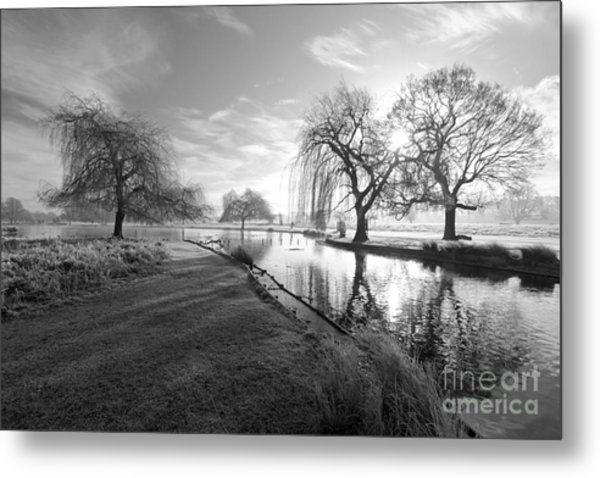 Mono Bushy Park Uk Metal Print