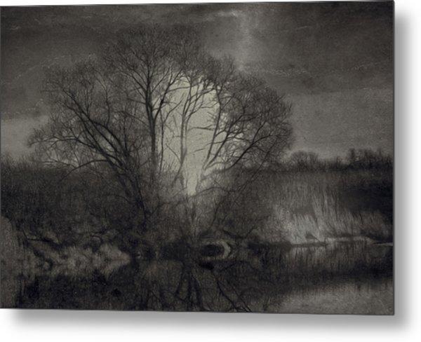 Monochrome Artistic Creek Tree Metal Print