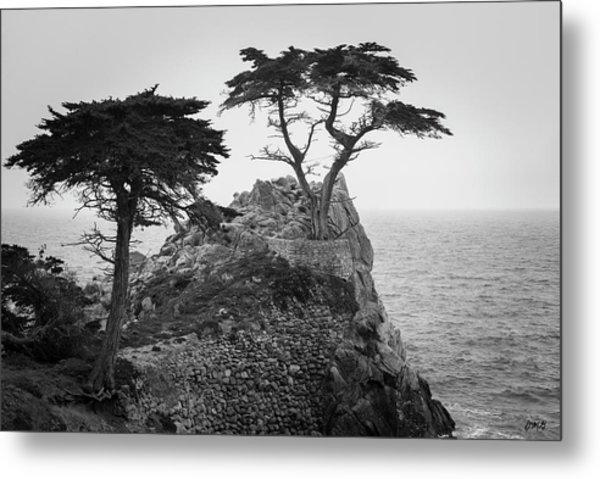 Monterey Peninsula II Bw Metal Print