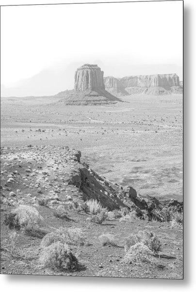 Monument In A Higher Key Metal Print