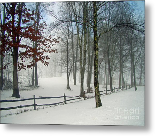 Mood Lifting Metal Print