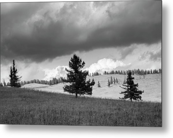 Moody Meadow, Tsenkher, 2016 Metal Print