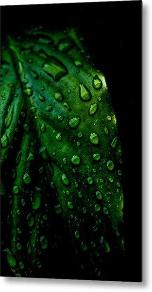 Moody Raindrops Metal Print