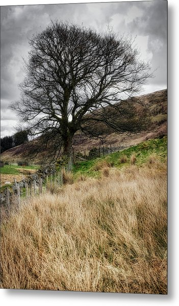 Metal Print featuring the photograph Moody Scenery In Central Scotland by Jeremy Lavender Photography