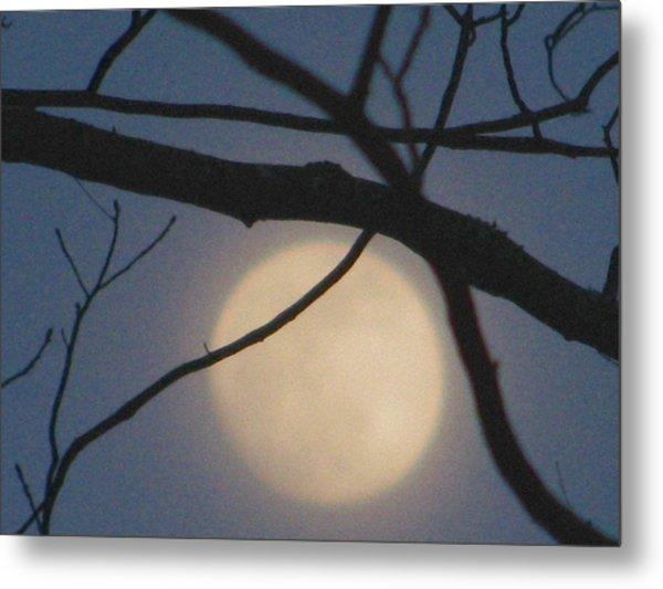 Moon Glow Metal Print