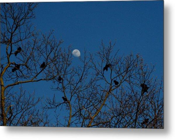 Moon In The Sky 3 Metal Print