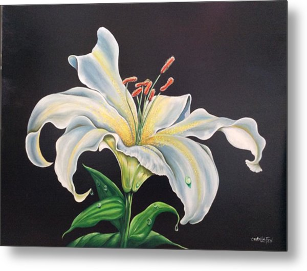 Moon Light Lilly Metal Print