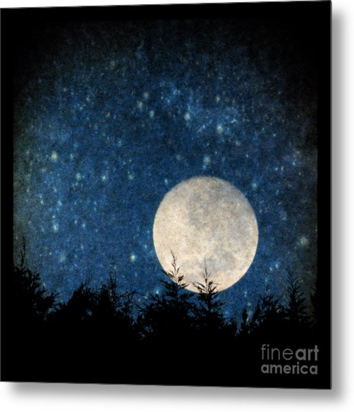 Moon, Tree And Stars Metal Print