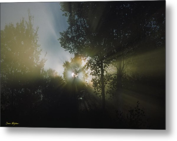 Moonbeams Metal Print