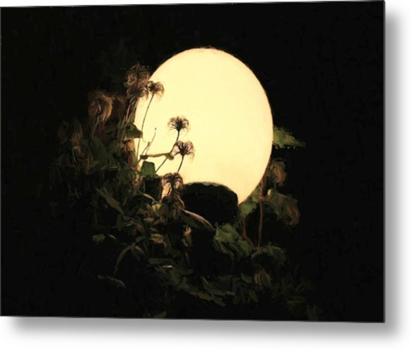 Moonglow Thistles Metal Print