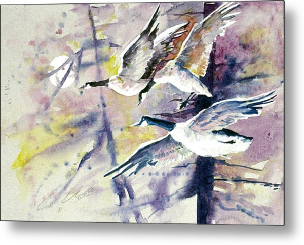 Moonlight Canadian Geese Metal Print