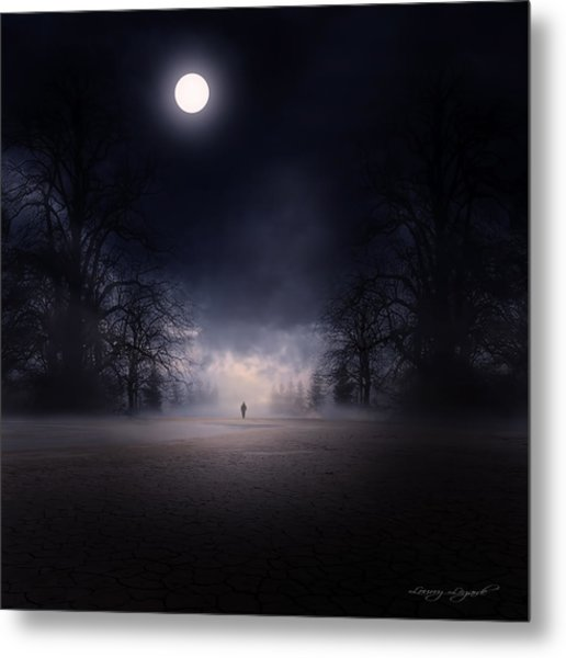 Moonlight Journey Metal Print
