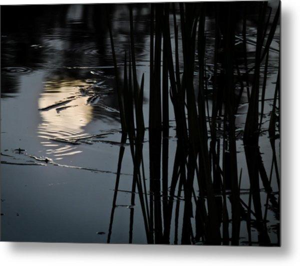 Moonlight Reflections Metal Print