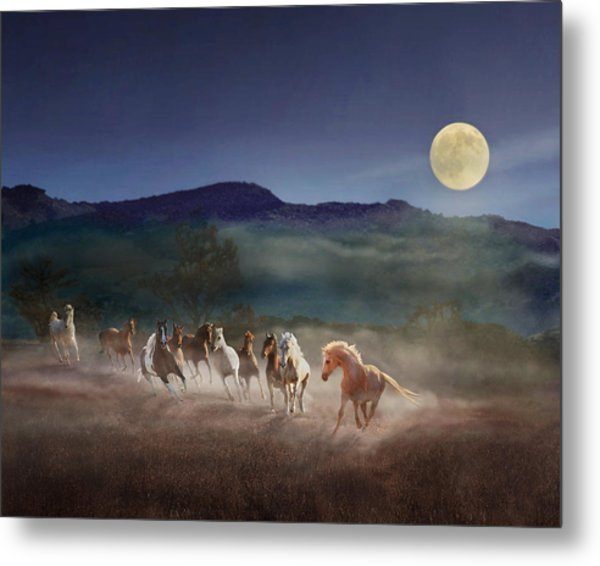 Moonlight Run Metal Print