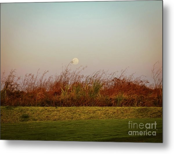Moonscape Evening Shades Metal Print