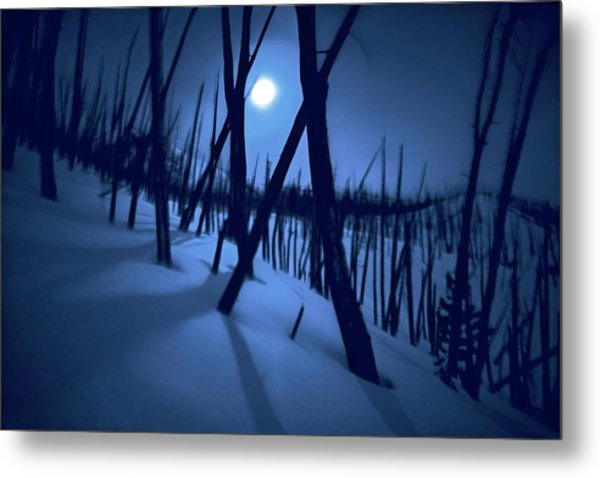 Moonshadows Metal Print