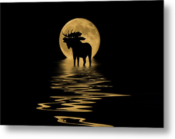 Moose In The Moonlight Metal Print