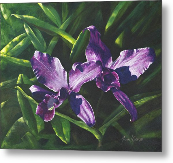 Morada Morning Metal Print